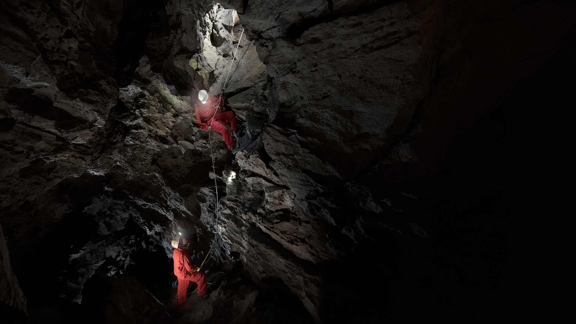 Cavers rappelling in Rat's Nest Cave on the Adventure Tour